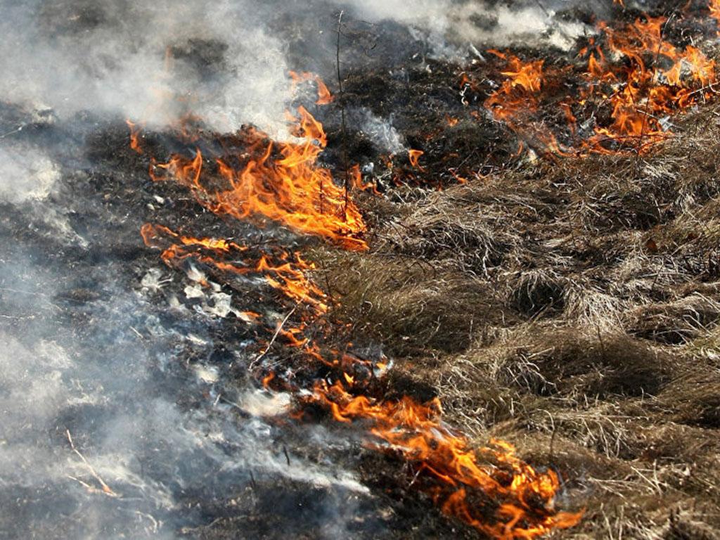 Шахтинское отделение ВДПО напоминает жителям города Шахты о начале весенне-летнего пожароопасного периода